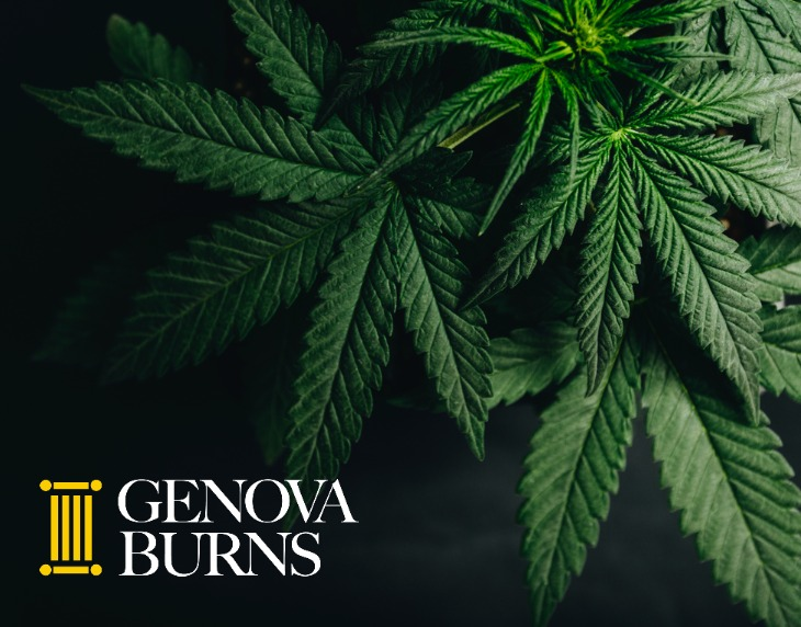 Image for Genova Burns Cannabis Law Attorneys Answer Industry FAQs in ROI-NJ